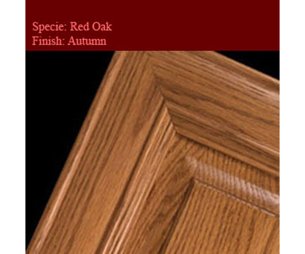 Red Oak-Autumn