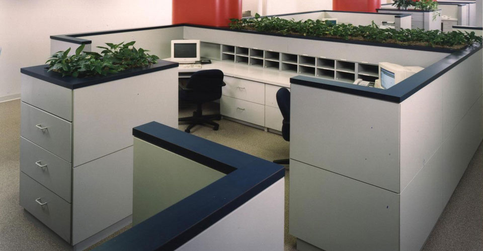 Reception Desk and Business Office